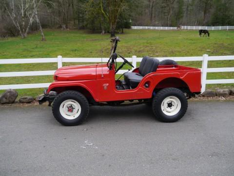 1966 Jeep Willy CJ5 34.000 actual miles na prodej