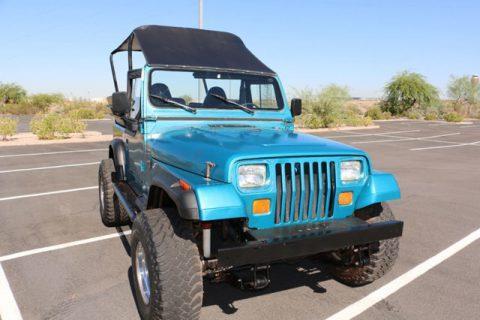 1993 Jeep Wrangler YJ,Custom 8 Passenger,4.0 Liter na prodej