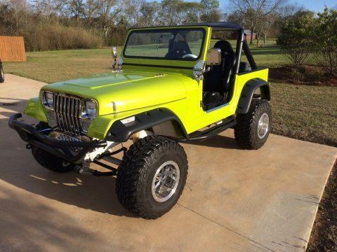1990 Jeep Wrangler YJ Chrome Complete restoration na prodej
