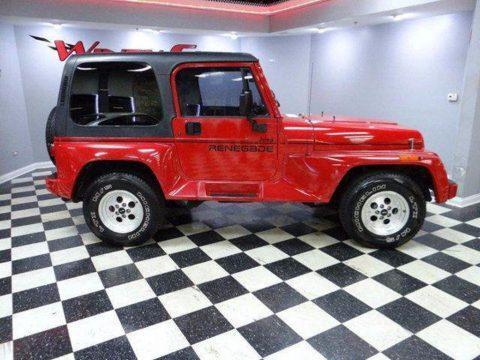 1994 Jeep Wrangler Renegade na prodej