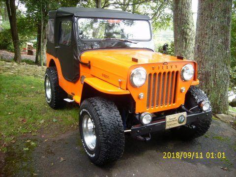 1962 Jeep Willys CJ3B na prodej