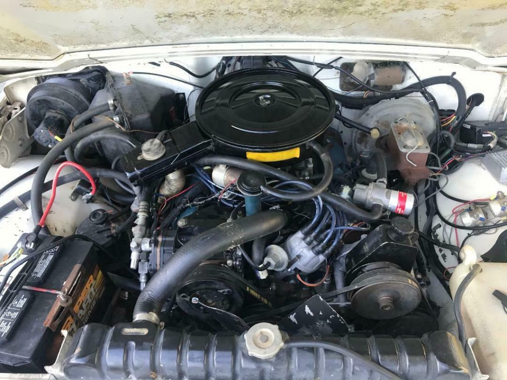1979 Jeep Wagoneer V8