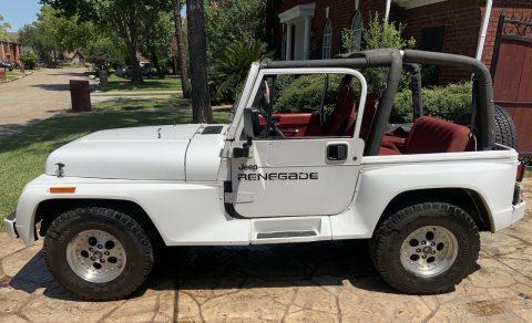 1992 Jeep Wrangler RENEGADE na prodej