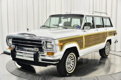 1991 Jeep Wagoneer na prodej